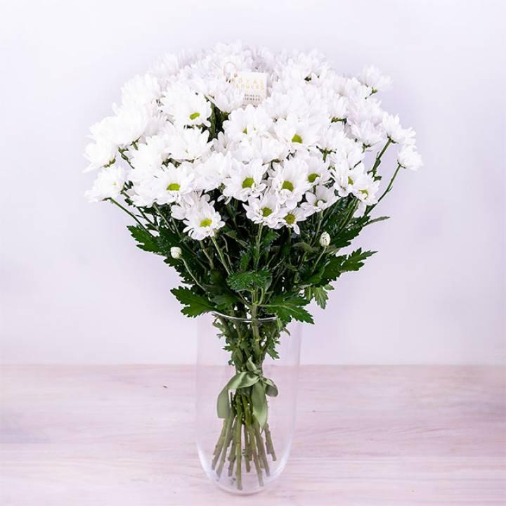 Букет из белой хризантемы Бакарди