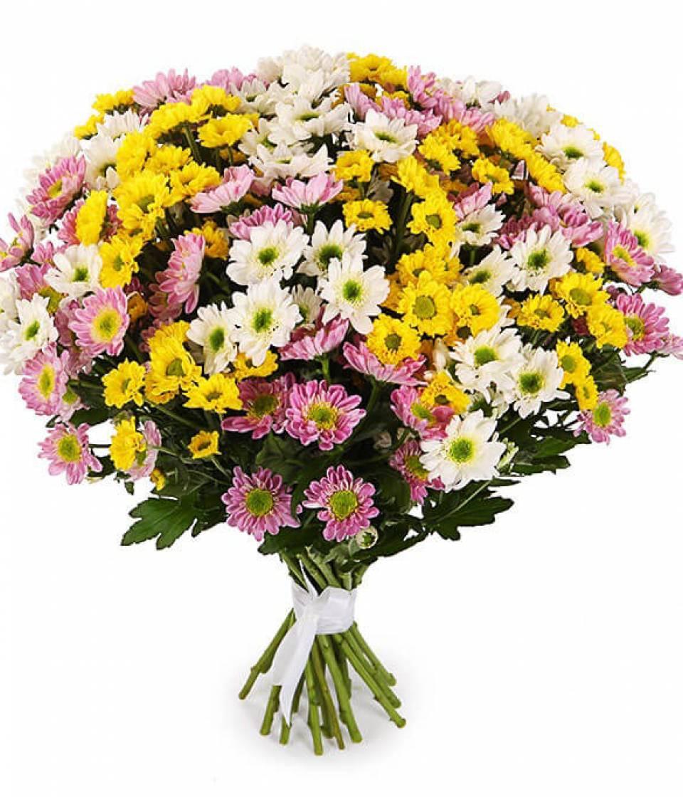 Подсолнухом полина, как выглядит букет из 31 хризантемы