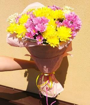 Хризантема - весенний микс