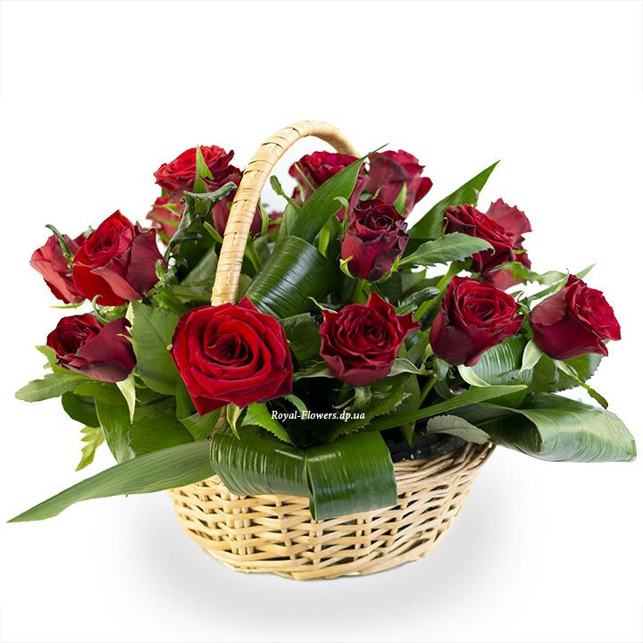 25 красных роз в корзине - сорт Гран-При