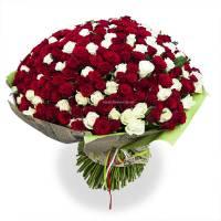 301 красная и белая роза