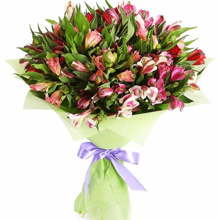 Букет Альстромерии - дикая орхидея