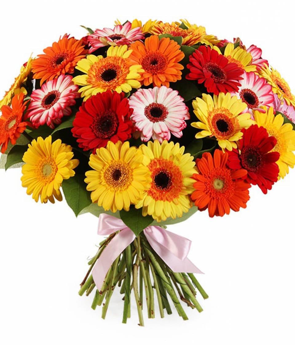 Букет Микс из 49 гербер, Купить цветов с доставкой в Днепре от ➜ Royal-Flowers