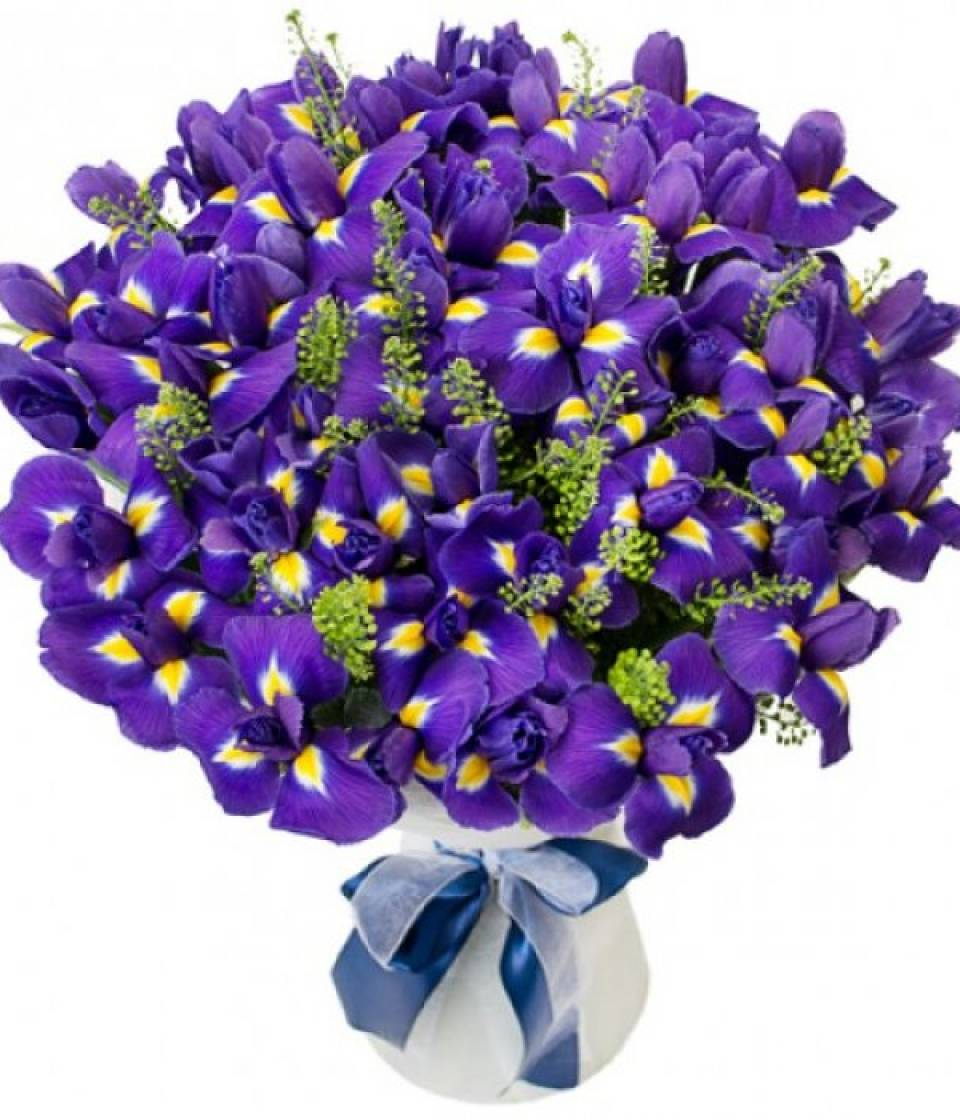 Открытка, открытка с днем рождения мужские цветы