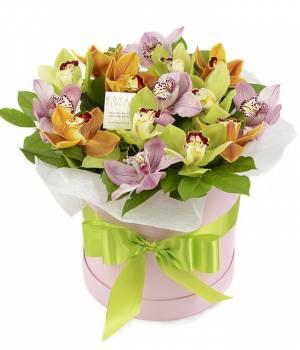 Орхидея в коробке Камелия № 15