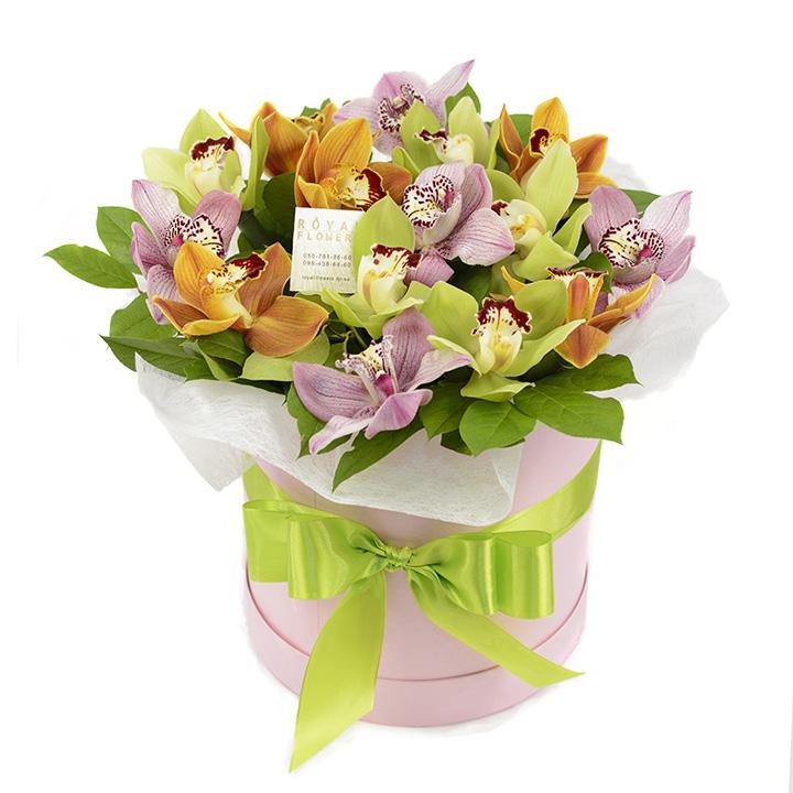 Букет: 15 орхидей в шляпной коробке Камелия № 15 - цветы - Днепр