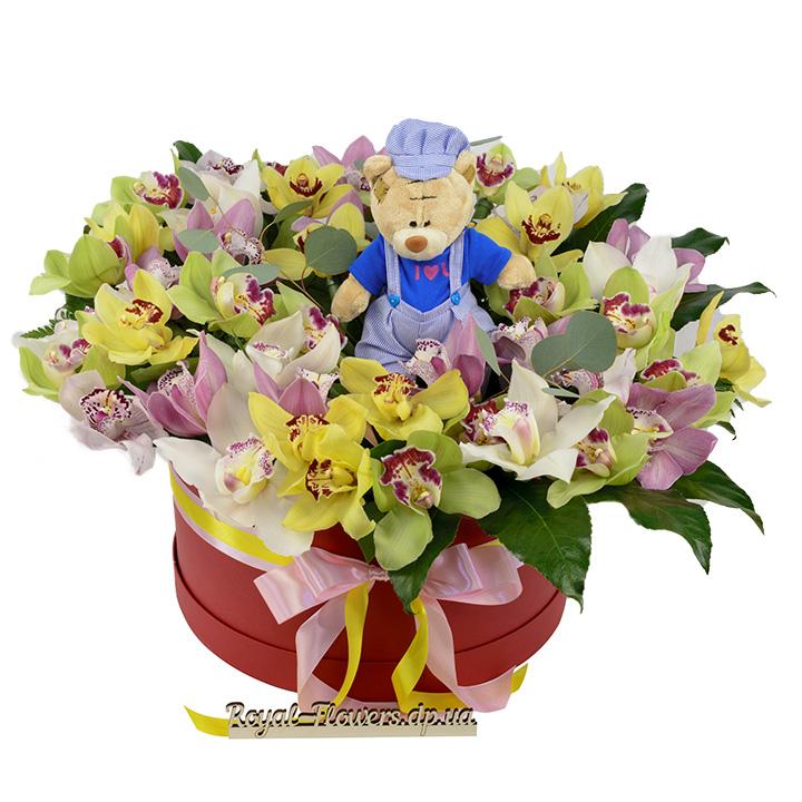 Букет: 45 орхидей в шляпной коробке 45 поцелуев- цветы - Днепр