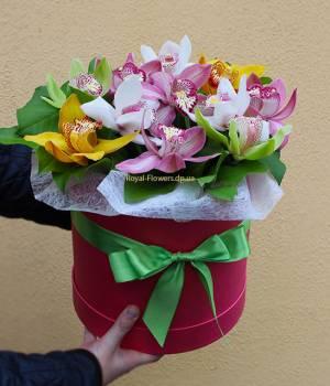 """""""Камелия"""" - Орхидея в коробке"""