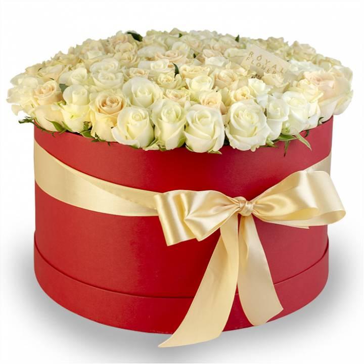 101 белая и кремовая роза в коробке - сорт Аваланч и Талея