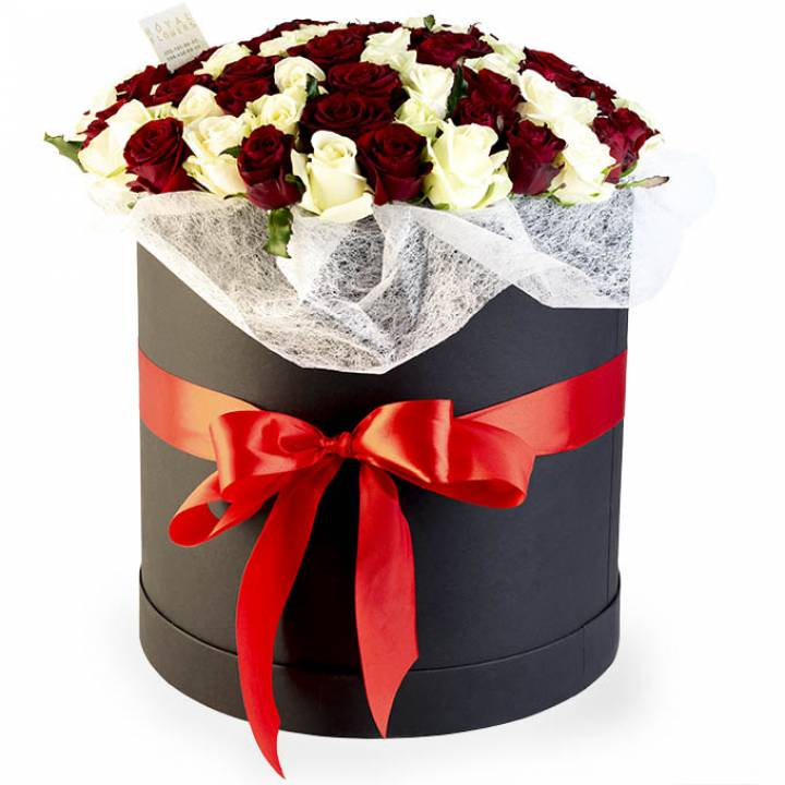 101 красная и белая роза в коробке - сорт: Гран При и Аваланч