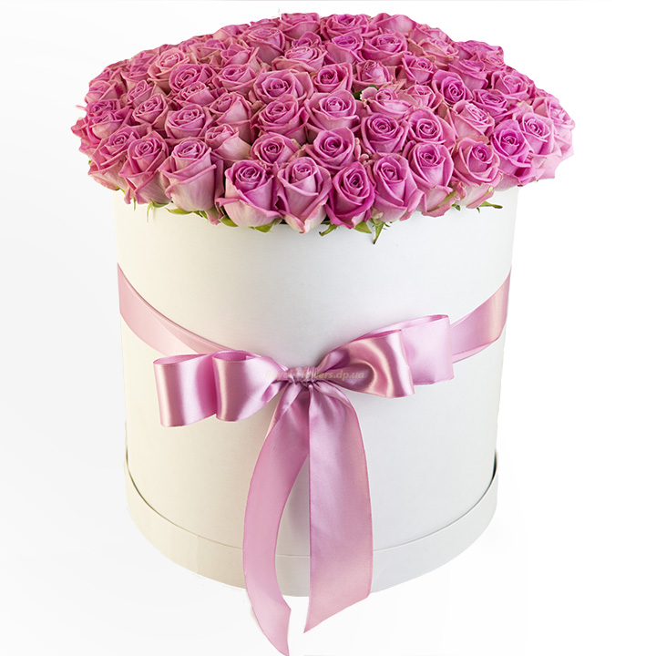 101 розовая роза в шляпной коробке - сорт Аква