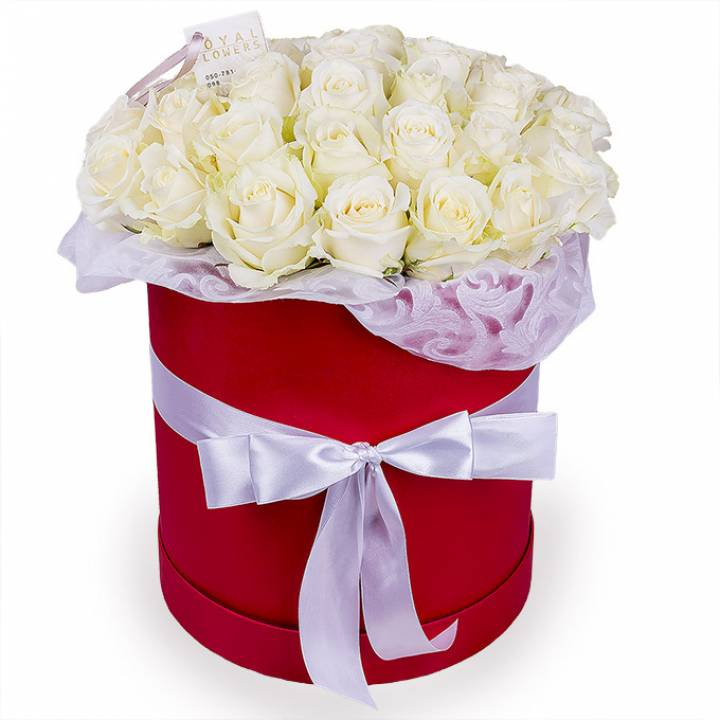 31 белая роза в шляпной коробке - Розы - Днепр