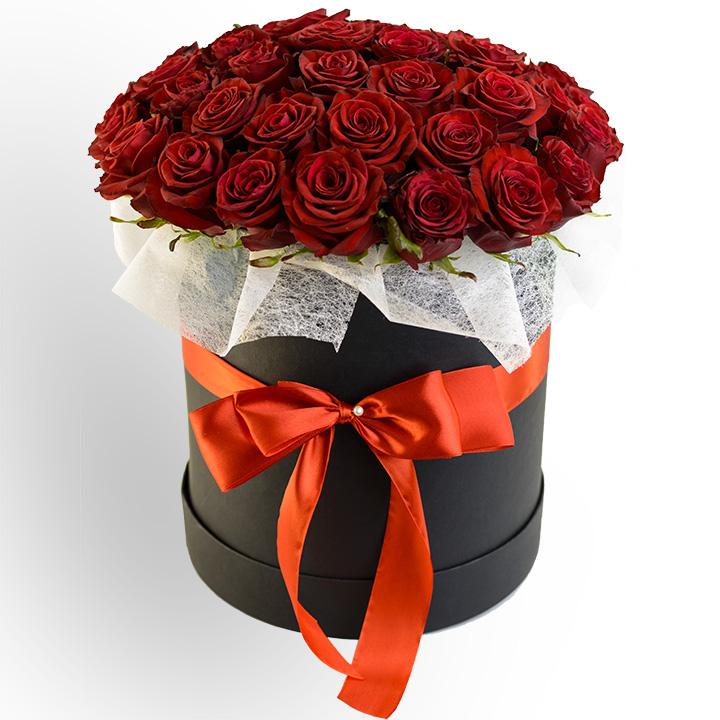 51 красная роза сорт Престиж в коробке Стиль