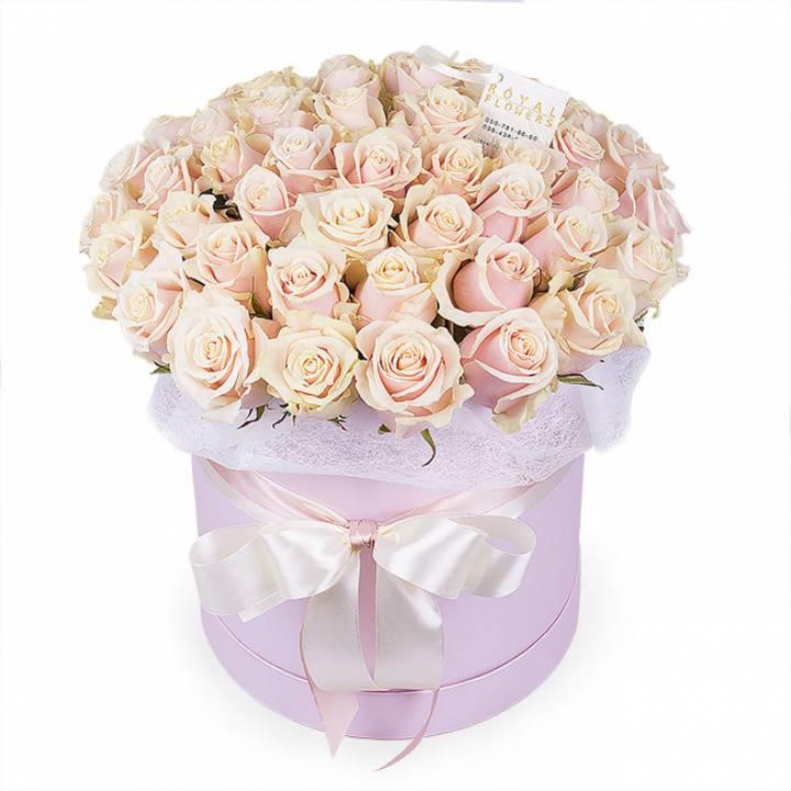51 кремовая роза в шляпной коробке - сорт Талея