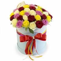 51 разноцветная роза в коробке