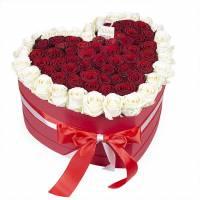 75 белых и красных роз в коробке сердце