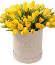 51 солнечных тюльпанов в шляпной коробке