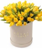 75 солнечных тюльпанов в шляпной коробке