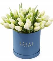 51 белый тюльпан в коробке