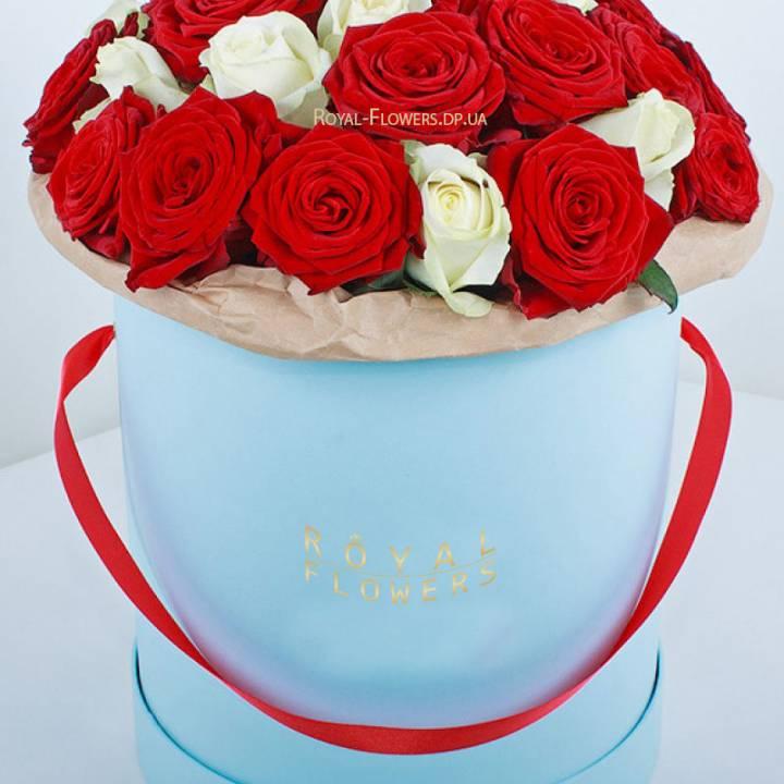 51 роза в шляпной коробке белого и красного цвета