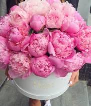 Розовые пионы (импорт) в коробке Jazz