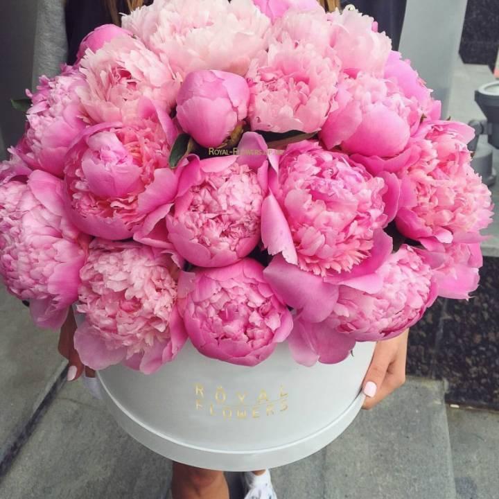 Букет Jazz из розовых пионов в шляпной коробке