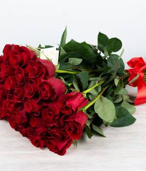 25 красных импортных роз