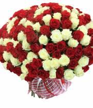 101 роза Престиж и Аваланч
