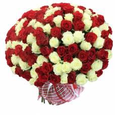 101 роза белая и красная