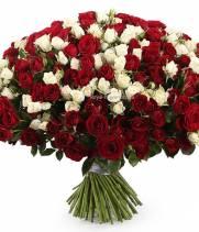 Букет 101 кустовая роза, красно белый микс