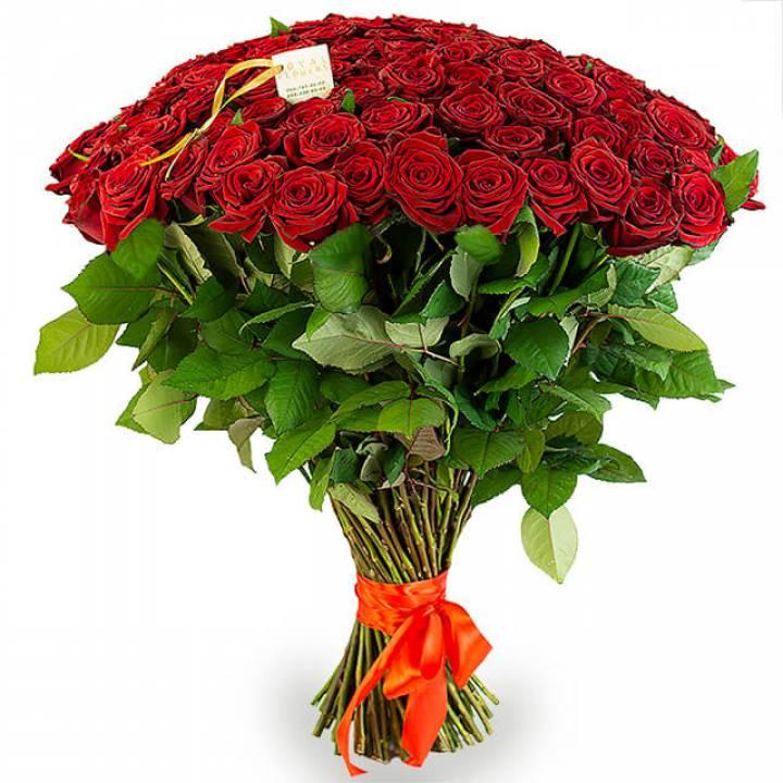 Букет 101 красная роза, сорт Гран-при или Престиж