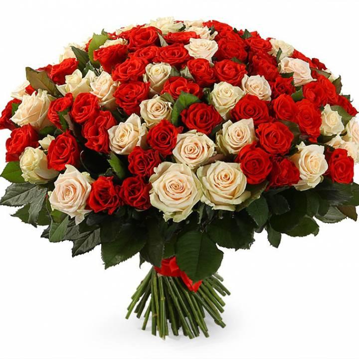 101 роза в букете из трех сортов