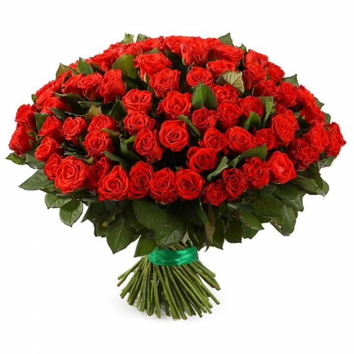 101 роза Эль Тора Днепр