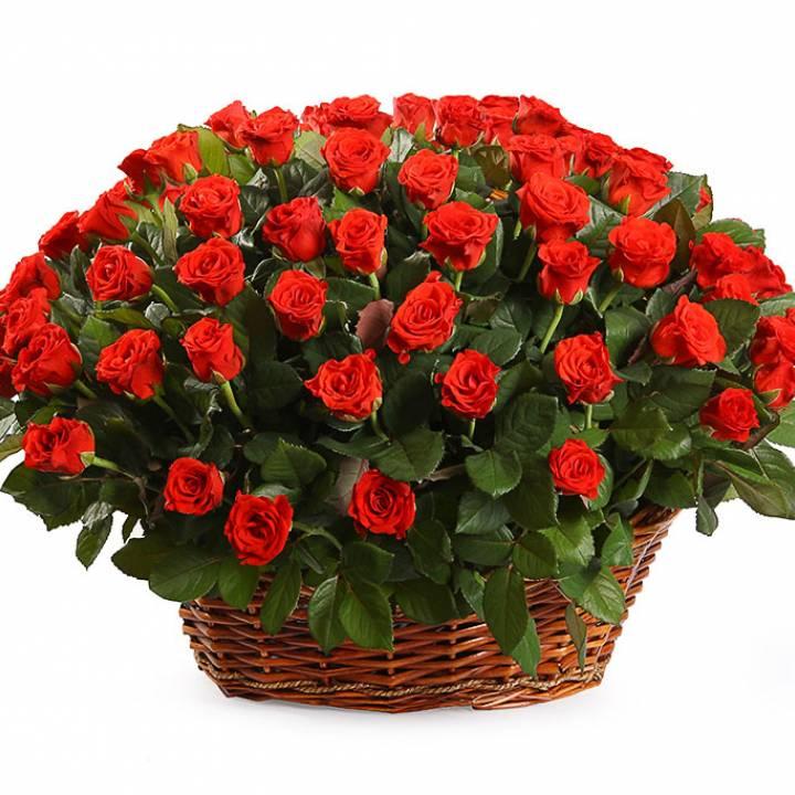 Корзина алых роз сорт Эль Торо 101 шт