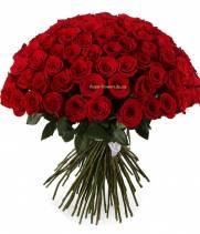 101 импортная роза - красная