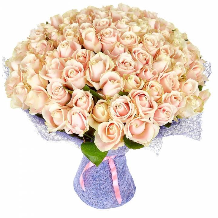 Букет 101 роза, кремовая