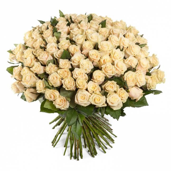 Букет 101 роза, пастельного тона сорт Талея