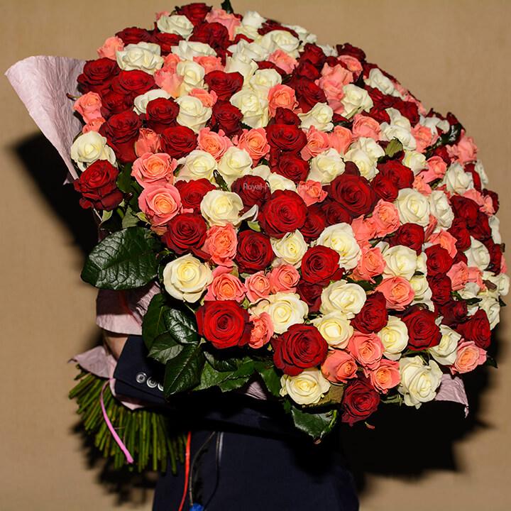 201 роза - огромный букет - микс