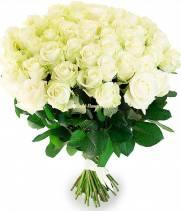 51 белая роза, Аваланч