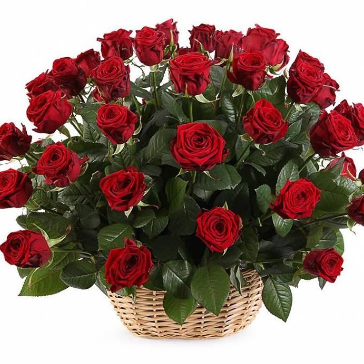 Корзина с 51 красной розой