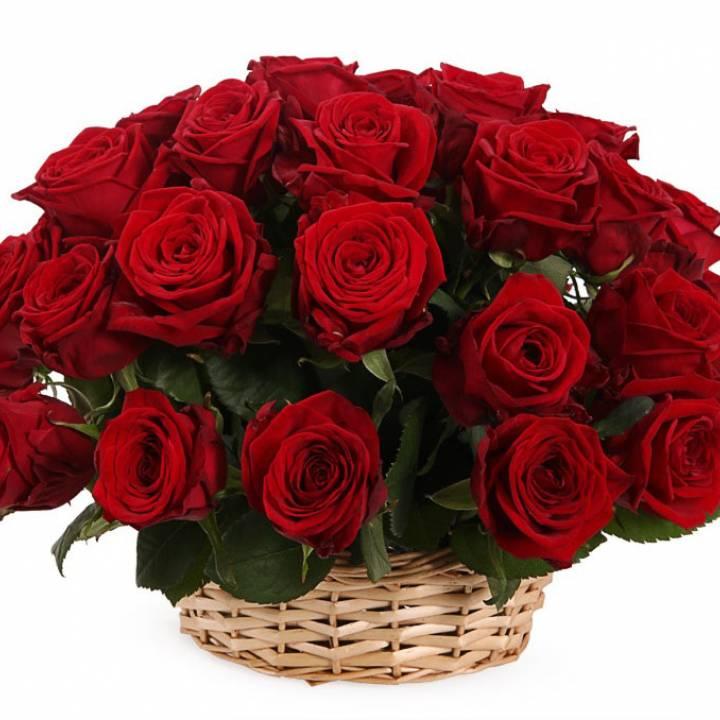 Корзина красных роз 39 шт