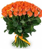 101 оранжевая роза - сорт Вау
