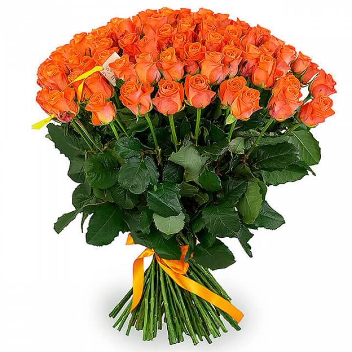 Букет оранжевых роз - сорт Вау 101 шт
