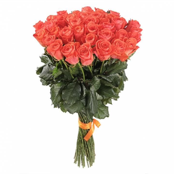 Букет оранжевых роз сорт Вау 51 шт