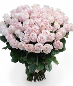 51 розовая импортная роза