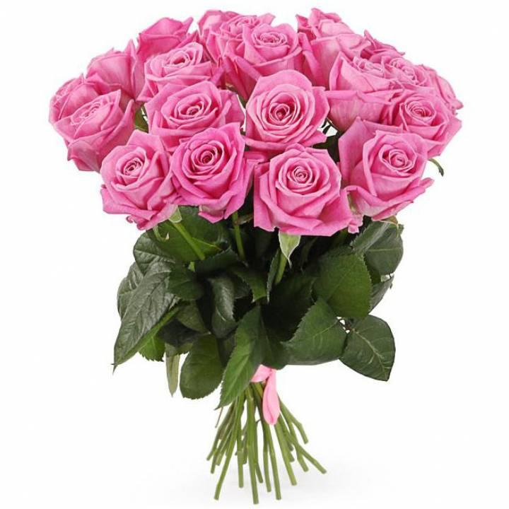 21 розовая роза, Аква