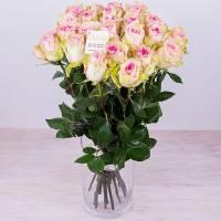 15 роз Эсперанса - Воздушная нежность