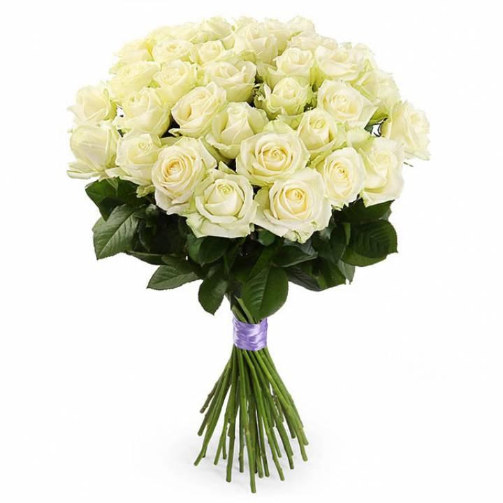 39 белых роз Аваланч