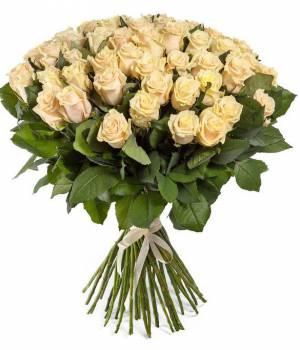51 роз кремового цвета, сорт талея