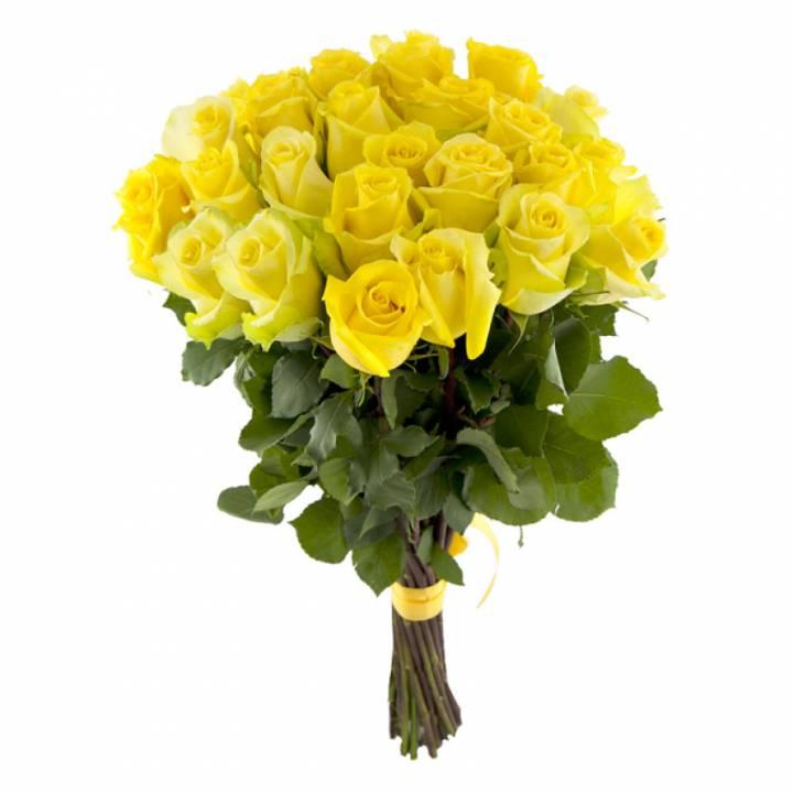 25 Желтых роз - премиум сорт